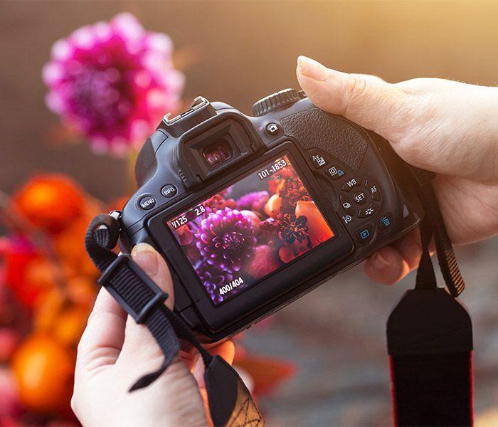 Digital Photography (Beginners/Intermediate)